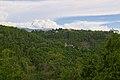 Sant'Alberto - panoramio (1).jpg