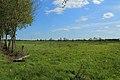 Schale Naturschutzgebiet Wehrstroot 03.JPG