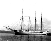 Schooner MINNIE A CAINE anchored in harbor.jpg
