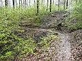 Schwarzwald-Schwäbische-Alb-Allgäu-Weg (HW5) im Naturpark Schönbuch - panoramio (3).jpg