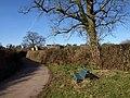 Seat, Gappah - geograph.org.uk - 1170269.jpg