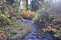 Seattle - Thornton Creek approaching Meadowbrook Pond 01.jpg