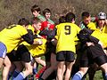 Section Sportive Rugby Bonnefont.jpg