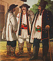 Serbs in Bačka, painting, 19th century.jpg
