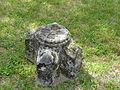 Servières-le-Château Glény chapelle vestiges (1).JPG