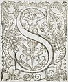 Seventeen Ornamental Letters (I, M, N, R, S) LACMA 53.31.2.5a-q (13 of 17).jpg