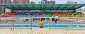 Sha Tin College Swimming Gala 2011.jpg