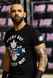 Shawn Spears Canadian professional wrestler