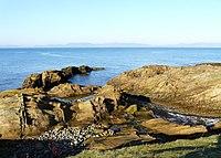 Shoreline looking across Dornoch Firth - geograph.org.uk - 687442.jpg