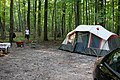 Sibbald Point Provincial Park IMG 3104 (15385141352).jpg
