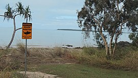 Sign about shark sighting on the beach at Clairview, Queensland, 2016.jpg