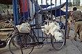 Silk Road 1992 (4367897618).jpg
