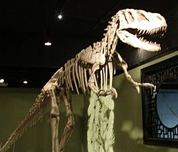 Sinraptor hepingensis