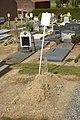Sint-Agatha-Rode cemetery A.jpg
