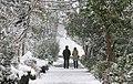 Snowy day of Tehran - 13 January 2007 (2 8510230258 L600).jpg