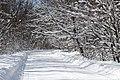 Snowy road Sosonka 2013 G1.jpg