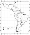 Solanum-amygdalifolium-Distribution-PhytoKeys-022-001-g015.jpg