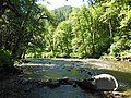 South Santiam River at Trout Creek Campground.jpg