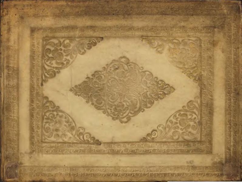 File:Specimens of calligraphy and natural history illustration.djvu