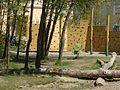 Spielplatz - panoramio - Mayer Richard (1).jpg