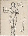 Standing Nude Woman and Studies of a Hand, Leg, and Feet MET DT3385.jpg