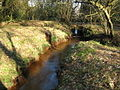Stanford Brook on Stanford Common - geograph.org.uk - 701314.jpg