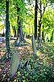 Stary cmentarz żydowski w Cieszynie23.JPG