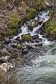 Steelhead Falls (15274516990).jpg
