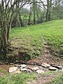 Stepping Stones, Public Footpath near Hartsgreen, Shropshire - geograph.org.uk - 401453.jpg
