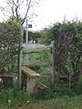 Stile in Hedge - geograph.org.uk - 429578.jpg