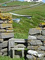 Stile in the drystane dyke - geograph.org.uk - 1125876.jpg