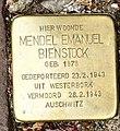 Stolpersteine Gouda Kleiweg37 (detail1).jpg