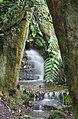 Stream Garden Trengwainton 2 (280057334).jpg
