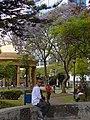 Street Scene - Downtown San Jose - Costa Rica - 03 (8477717298).jpg