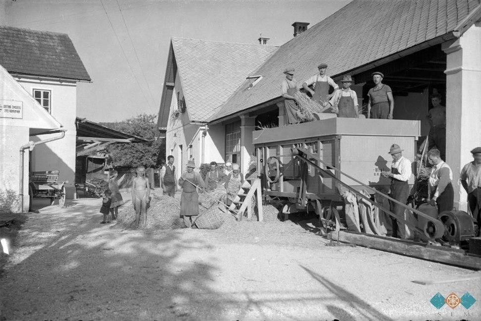 Strojna mlatev pšenice v Šmarci pri Vavpetiču okoli leta 1930