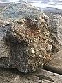 Sulfide Rock Sample from the Greater Sudbury Area.jpg