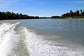 Susitna River in June 2015.JPG