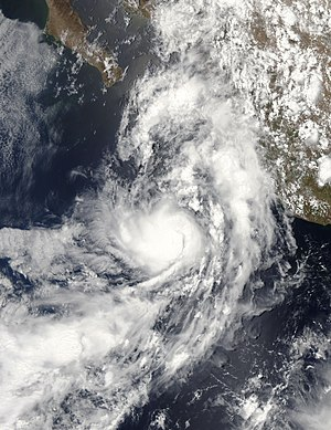Tropical Depression One-E (2009) - Image: TD 01E 2009 peak intensity vis