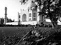 Taj Mahal -Beauty lies in the eyes of beholder.jpg