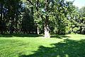 Tallinn, Kopli kalmistu.jpg