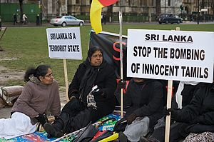 Protests against the Sri Lankan Civil War - Protesters in Parliament Square, London in January 2009