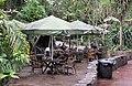 Terrace at Burgers' Zoo (b).jpg
