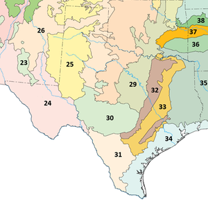East Central Texas forests - Image: Texas ecoregions