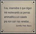 Texto de Carmiña García Prieto nunha xardineira en Vilalba. Galiza-15.jpg