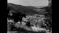 File:The Cougar Hunt (1920s silent film).webm