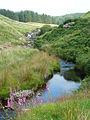 The Doethie Fawr near Blaendoethie, Ceredigion - geograph.org.uk - 901837.jpg