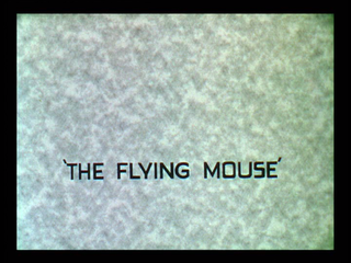<i>The Flying Mouse</i>