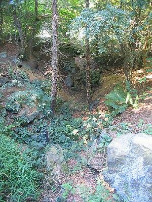 Ellen Willmott - Man-made gorge at Warley Place