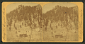 The Lodge in Crystal Park, from Robert N. Dennis collection of stereoscopic views.png