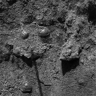 Margaritifer Sinus quadrangle - This image, taken by the microscopic imager, reveals shiny, spherical objects embedded within the trench wall